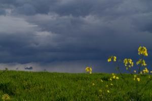 Condensation et précipitations sous l'orage